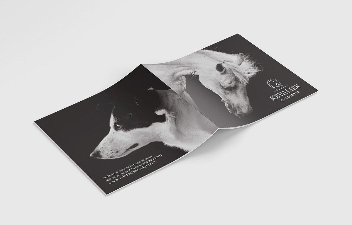 Kevalier open cover booklet design mockup