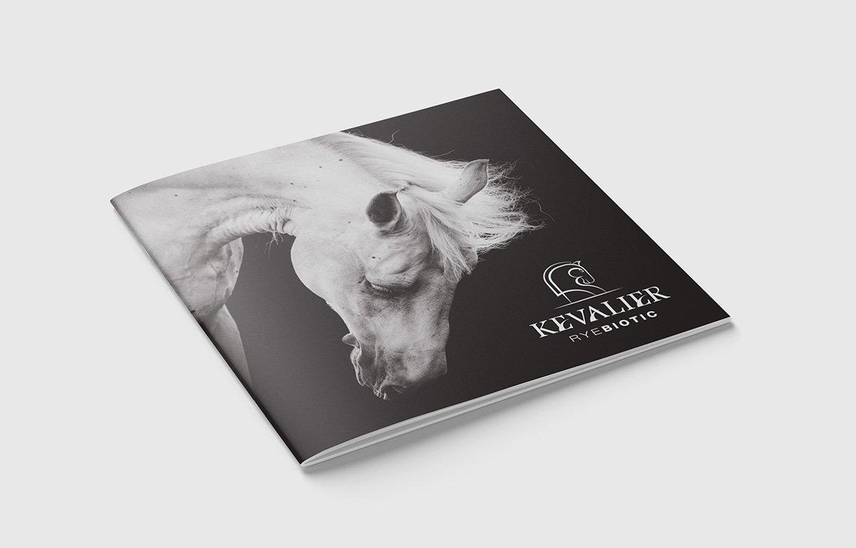 Kevalier square booklet cover design