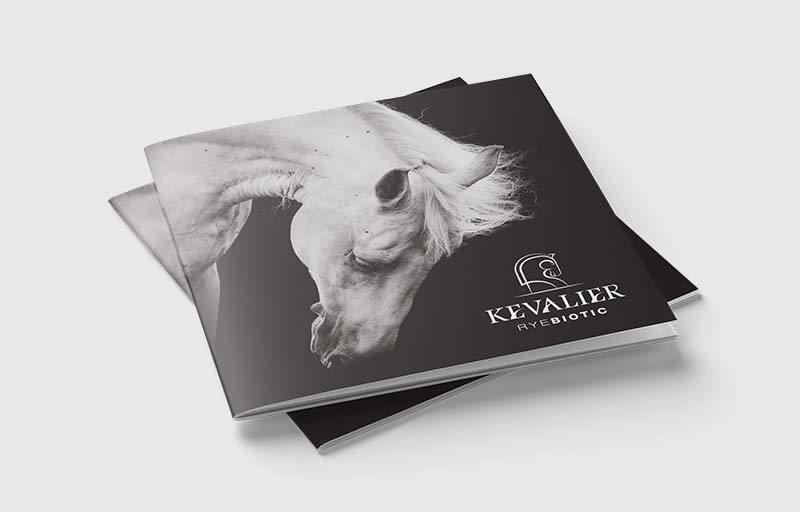 Equestrian Product Branding & Graphic Designs for Kevalier