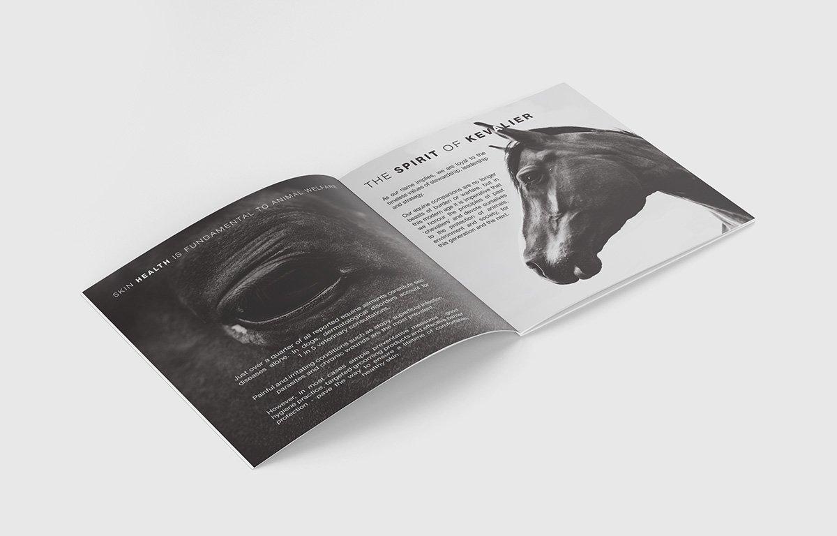 Kevalier brochure design